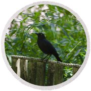 Raven In The Wild Round Beach Towel