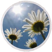 Reaching Up To Sol Round Beach Towel