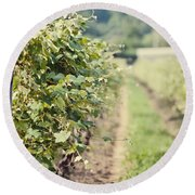 Ready For Harvest  Round Beach Towel by Lisa Russo