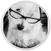 Really Portait Of A Westie Wearing Glasses Round Beach Towel