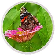 Red Admiral Butterfly And Zinnia Flower Round Beach Towel