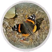 Red Admiral Butterfly - Vanessa Atalanta Round Beach Towel