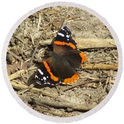 Red Admiral Round Beach Towel