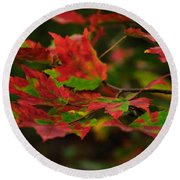 Red And Green Autumn Leaves Round Beach Towel