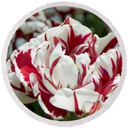Red And White 6393 Round Beach Towel