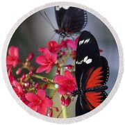 Red And White Longwing Butterflies  Round Beach Towel