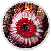 Red And White Mum With Indian Corn Round Beach Towel