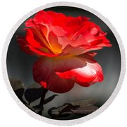 Red And White Rose Round Beach Towel