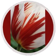 Red And White Tulip  Round Beach Towel
