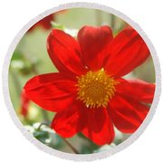 Red And Yellow Beauty Round Beach Towel