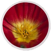 Red And Yellow Poppy 1 Round Beach Towel