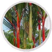 Red Bamboo Round Beach Towel