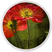 Red Beauties In The Field Round Beach Towel