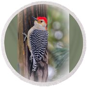 Red-bellied Woodpecker Round Beach Towel