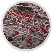 Red Berries Covered In Snow Round Beach Towel
