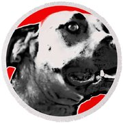 Red Blooded Scooby Dog Round Beach Towel