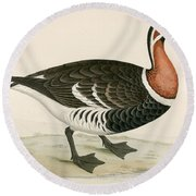Red Breasted Goose Round Beach Towel