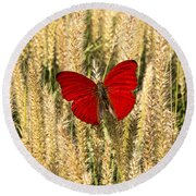 Red Butterfly In The Tall Weeds Round Beach Towel