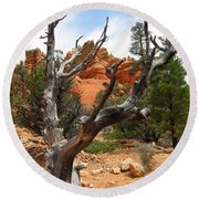 Red Canyon Tree And Rocks Round Beach Towel