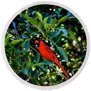 Red Cardinal 1 Round Beach Towel