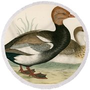 Red Crested Whistling Duck Round Beach Towel