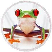 Red-eye Tree Frog 2 Round Beach Towel by Lanjee Chee