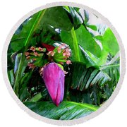 Red Flower Of A Banana Against Green Leaves Round Beach Towel