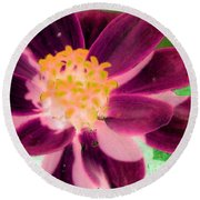 Red Flower - Photopower 256 Round Beach Towel