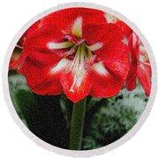 Red Flower With Starburst Round Beach Towel