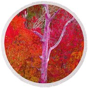 Pink Tree In A  Red Forest Round Beach Towel