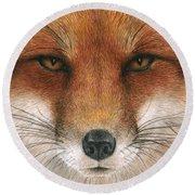 Red Fox Gaze Round Beach Towel