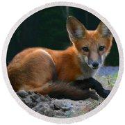 Red Fox Round Beach Towel by Kristin Elmquist
