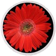 Red Gerber Daisy #2 Round Beach Towel