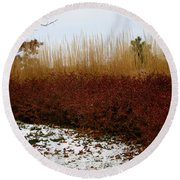 Red Gold Hedge Round Beach Towel
