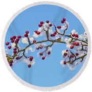 Red Haws Frosted By Snow Round Beach Towel