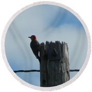 Red-headed Woodpecker Round Beach Towel