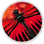 Red Heliconius Dora Butterfly Round Beach Towel