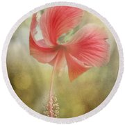 Red Hibiscus Round Beach Towel by David and Carol Kelly