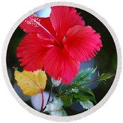 Red Hibiscus Flower Round Beach Towel