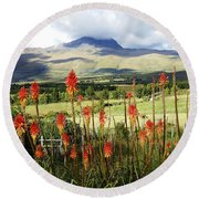Red Hot Pokers Of The Andes Round Beach Towel
