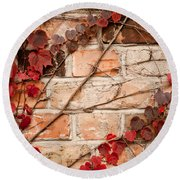 Red Ivy Leaves Creeper Round Beach Towel