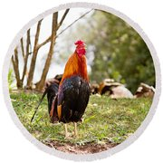 Red Jungle Fowl - Moa Round Beach Towel