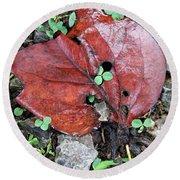 Red Leaf On Green Round Beach Towel