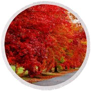 Red Leaf Road Round Beach Towel