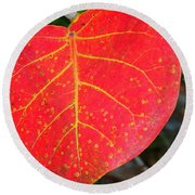 Red Leaf With Yellow Veins Round Beach Towel