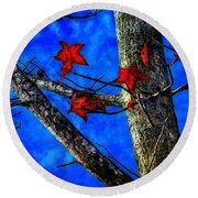 Red Leaves Blue Sky In Autumn Round Beach Towel