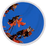 Red Leaves Blue Sky Round Beach Towel