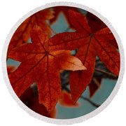 Red Leaves On The Branches In The Autumn Forest. Round Beach Towel