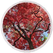 Red Leaves On Tree Round Beach Towel