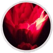 Red Lily At Night Round Beach Towel
